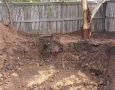 digging-around-tree-jan-juc-project